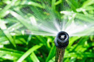 Conroe Sprinkler System
