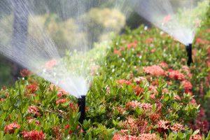 Conroe Sprinkler Installation